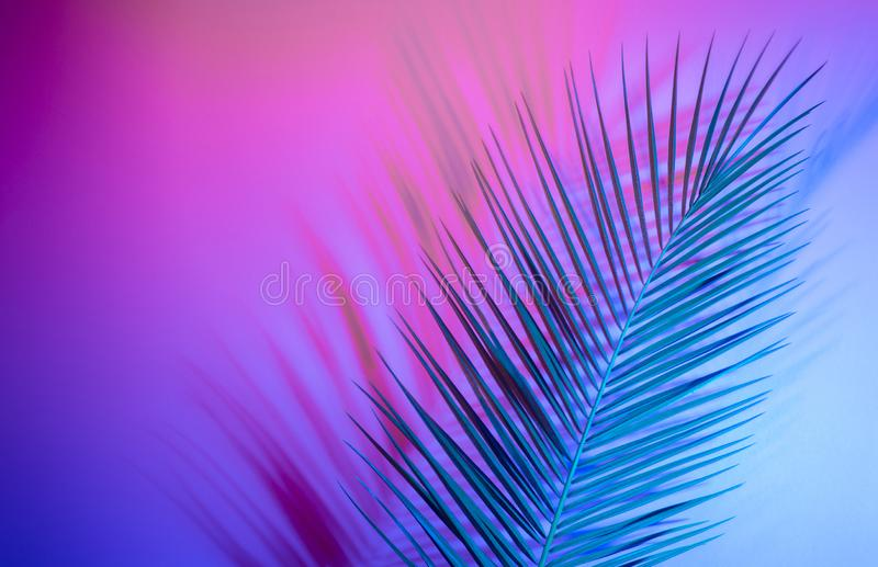 Holographic leaves. Concept art. Minimal surrealism background.  royalty free stock photos