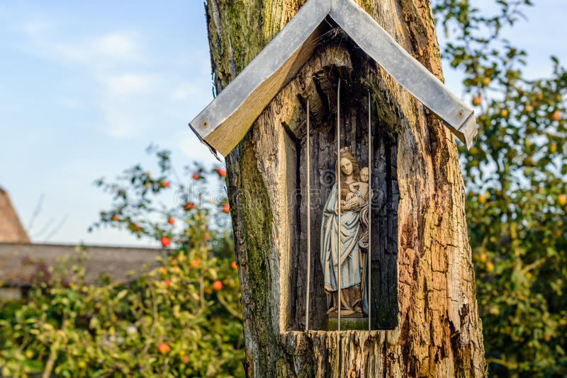 Holy Mary statuette in a niche carved out in an old tree. Holy Mary figurine in a niche carved out in an old and weathered tree at the edge of a farm yard in the royalty free stock images