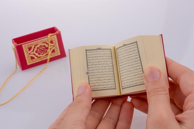 The Holy Quran. Hand holding The Holy Quran on a white background stock photography
