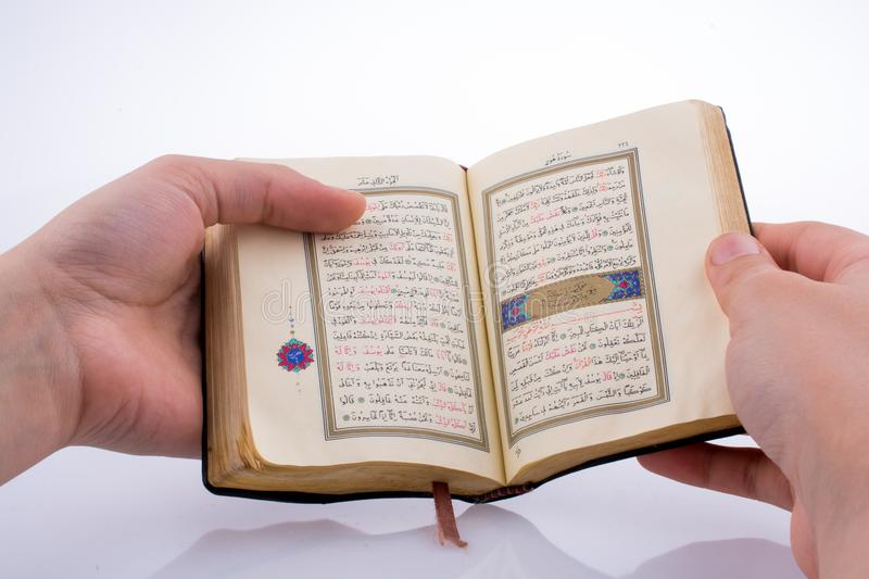 The Holy Quran. Hand holding The Holy Quran on a white background royalty free stock images