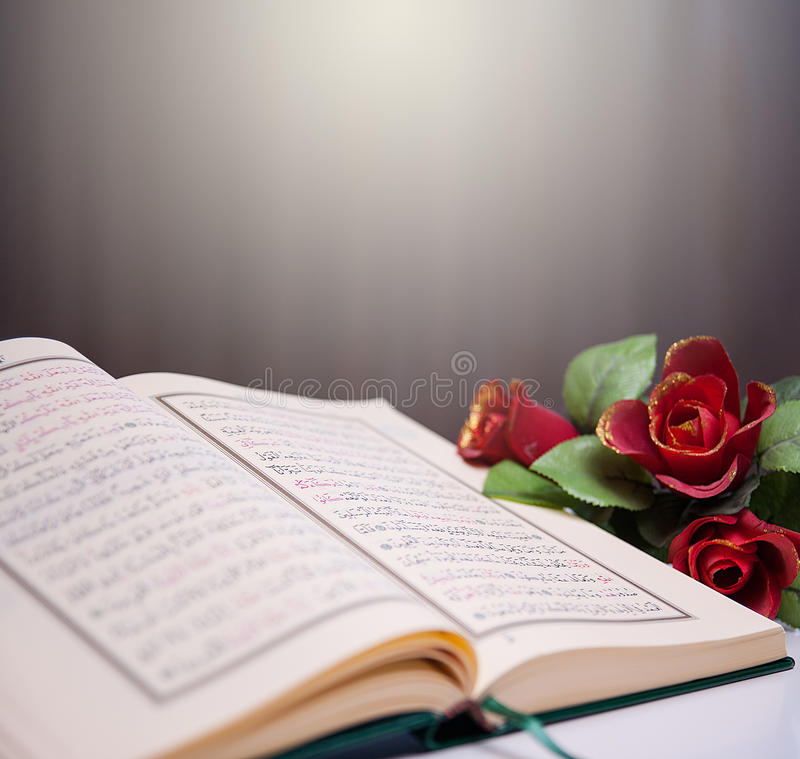 Holy Quran and roses. Rose on a pages of Holy Kor'an royalty free stock photos