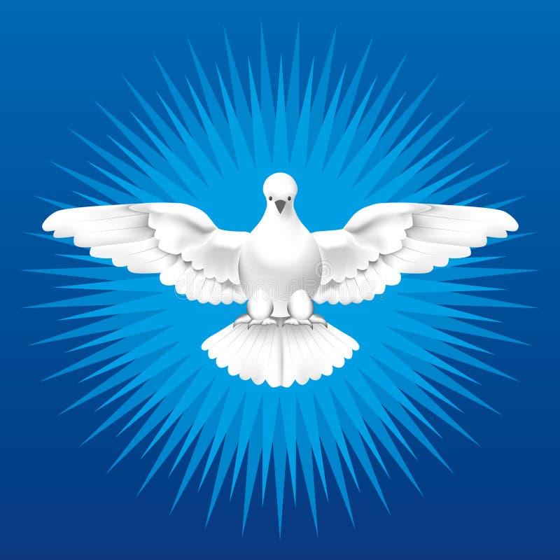 Holy Spirit. White dove as the Holy Spirit royalty free illustration