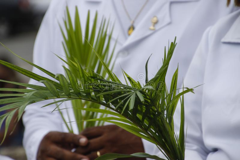 Holy Week Palm Sunday. Holy Week. Traditional Catholic celebration Palm Sunday. Christian faith stock photos