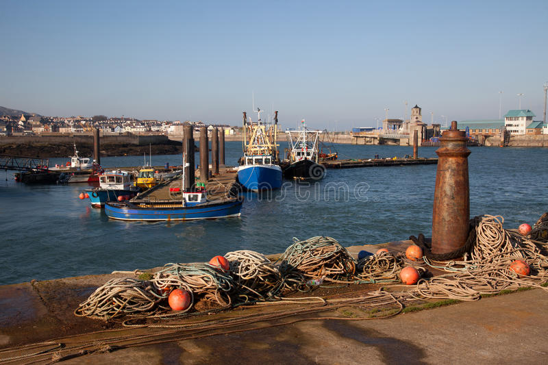 Download Holyhead harbour stock image. Image of north, small, wales - 23222199