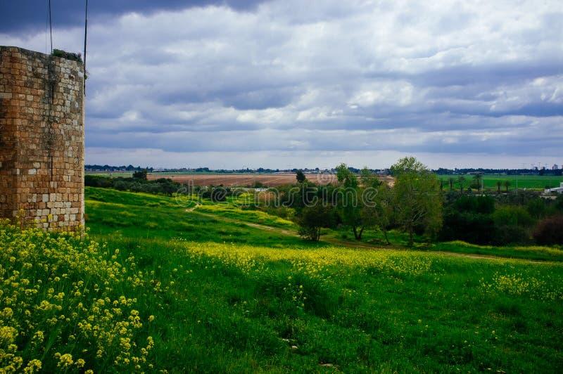 Download Holyland Series -Afek National Park#7 Stock Image - Image: 38903159