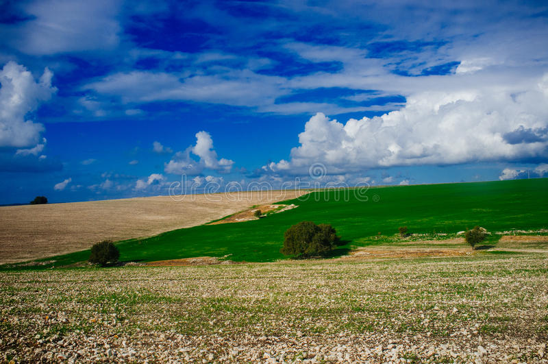 Holy Land Series - Plain of Manasseh (Ramot Manasseh)#3. The Plain of Menasseh, known also as Ramot Menashe, is a geographical region in northern stock image
