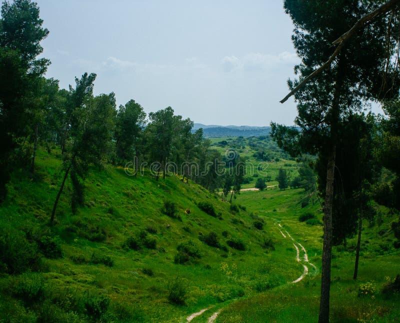 Holylandreeks - Gad Hill11 stock fotografie