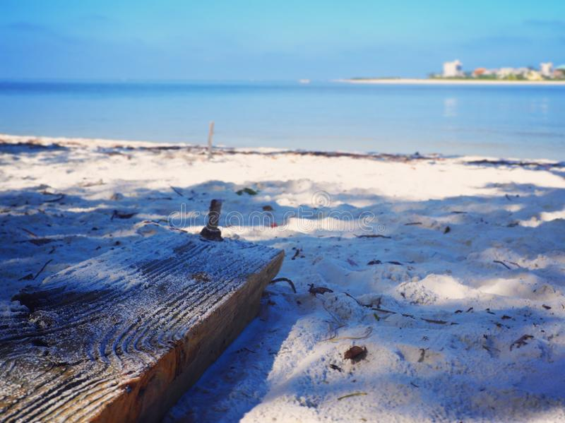 Holz auf dem Sand-Strand lizenzfreie stockbilder