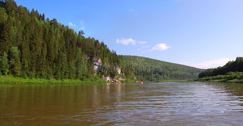 Holz auf Küste des Flusses lizenzfreie stockbilder