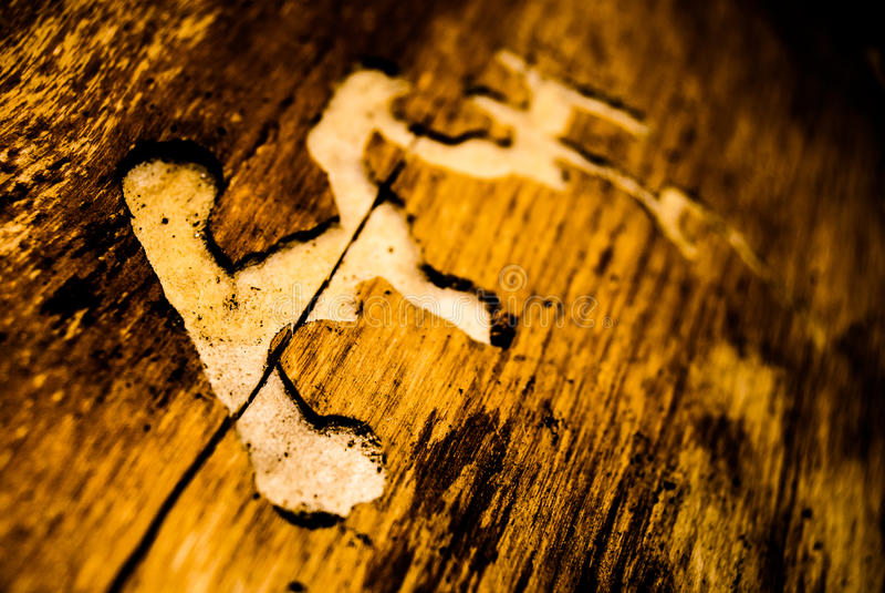 Holz beschädigt durch Borkenkäfer stockfotos
