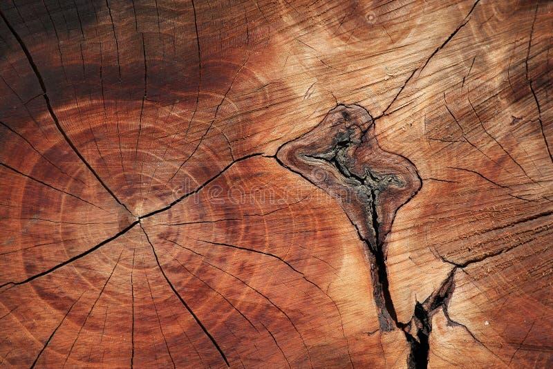Holz-Beschaffenheit lizenzfreies stockbild