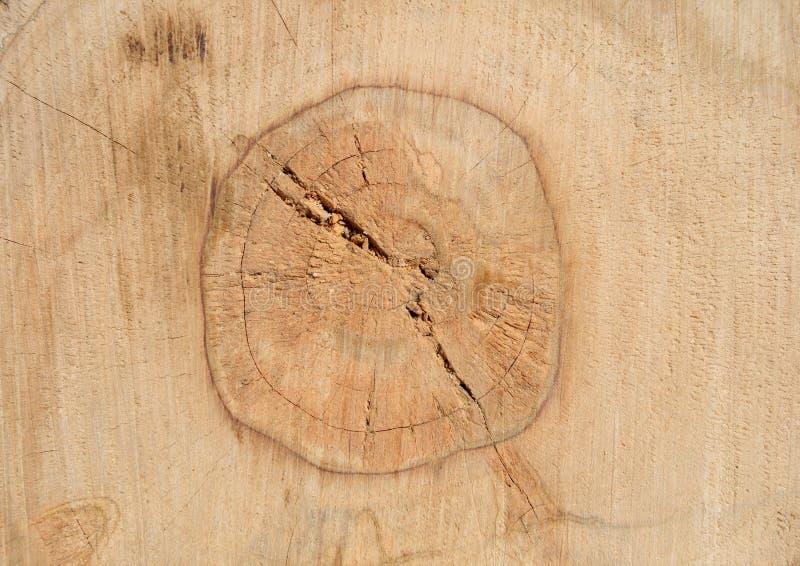 Holz im Kapitel stockfotografie