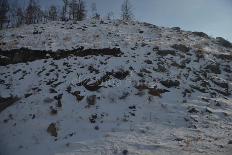Holz im Schnee lizenzfreies stockfoto