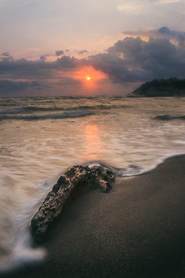 Holz am Ufer auf Meer lizenzfreie stockbilder