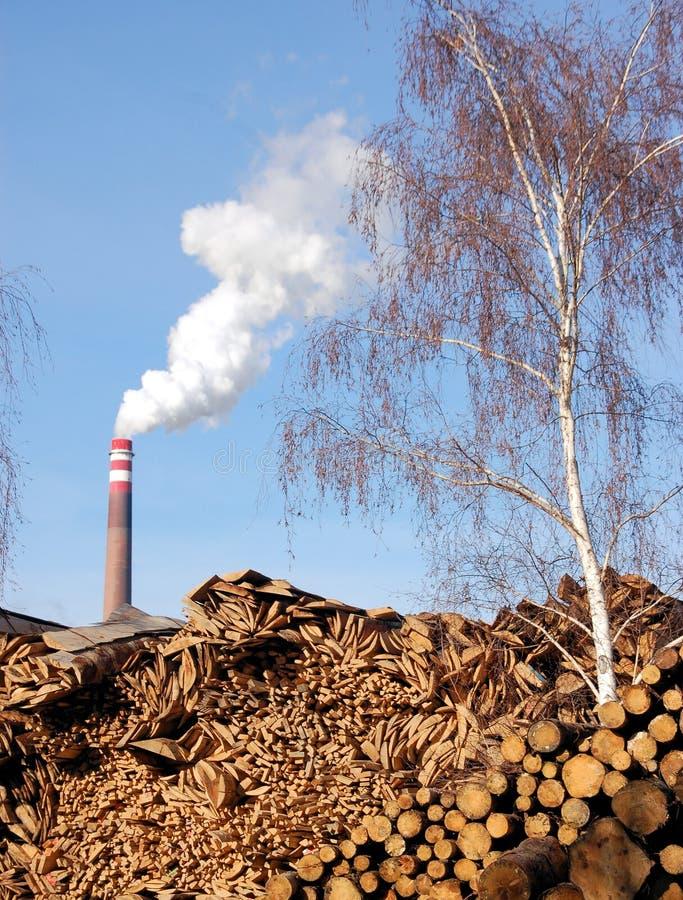 Holz und bimass Anlage stockbild