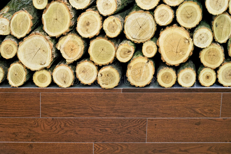 Holz und Protokoll stockbilder
