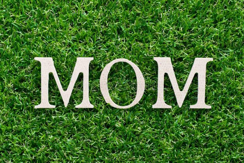 Holzalphabet in Wort Mama auf grünem Grashintergrund lizenzfreie stockfotografie