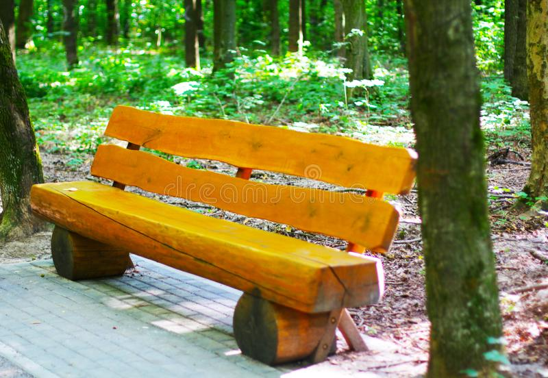 Holzbank auf Gasse im Park stockfotografie