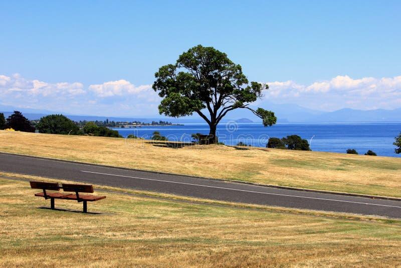 Holzbank auf Seite von See Taupo, Neuseeland stockbilder