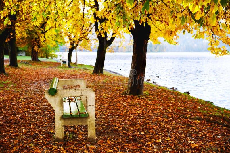 Holzbank in der Natur auf Hintergrund des Herbstwaldes und -sees stockfotografie