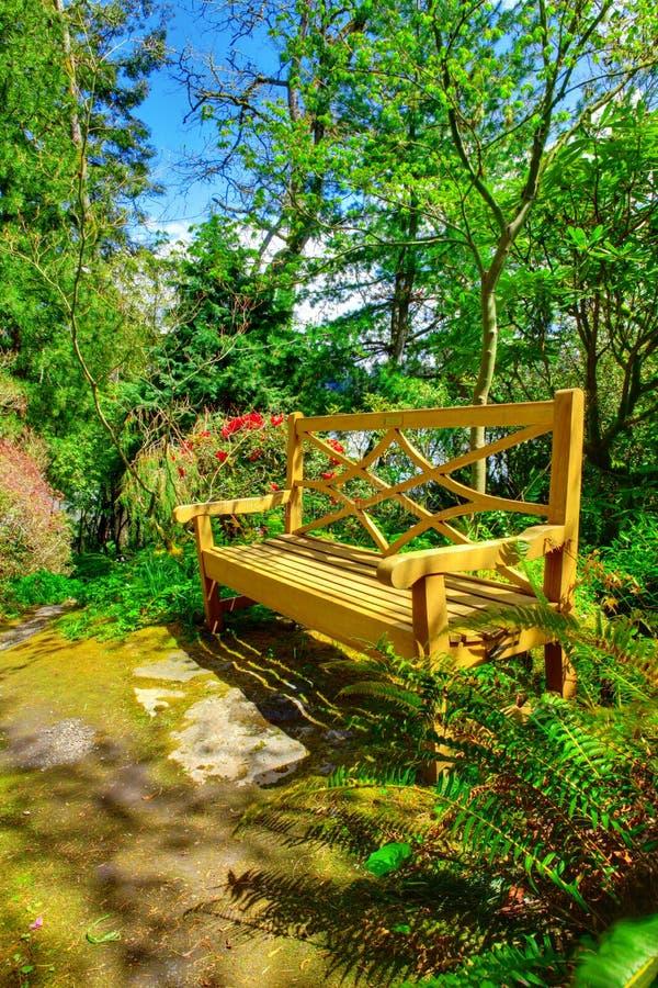 Holzbank, Gartenlandschaftsgestaltung lizenzfreie stockfotos