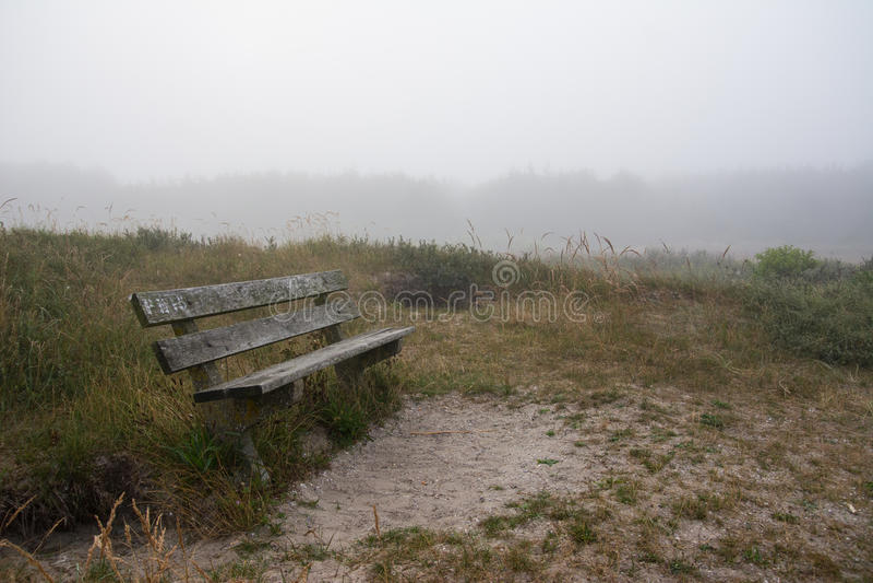 Holzbank im nebelhaften Wald lizenzfreie stockfotos