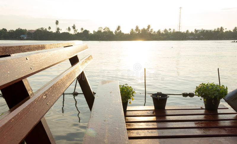 Holzbank am tropischen Flussufer stockfotografie