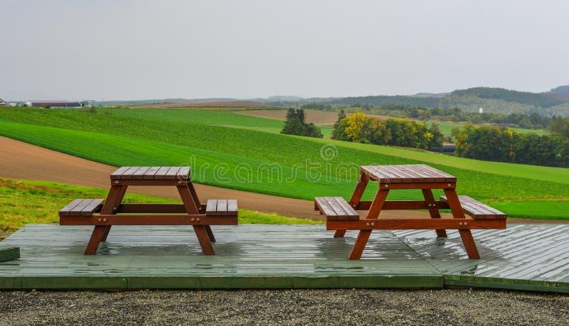 Holzbanken mit grünem Feld lizenzfreie stockfotos