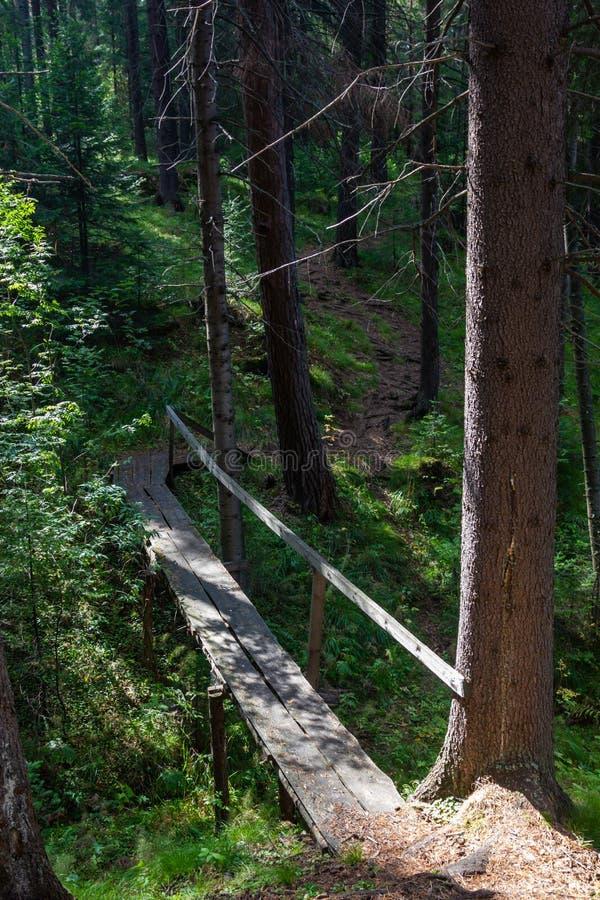 Holzbrücke über dem Strom nahe dem Dorf von Sloboda in der Swerdlowsk-Region lizenzfreie stockfotos
