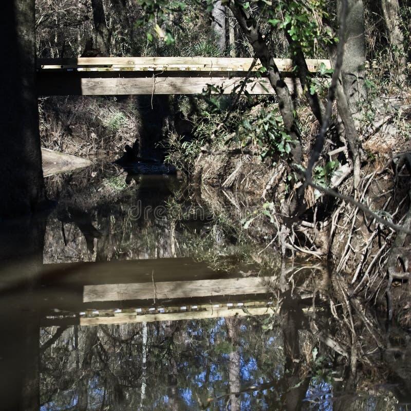 Holzbrücke über Nebenfluss mit Reflexion im Waldland stockbild