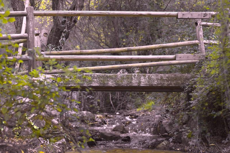 Holzbrücke auf Fluss lizenzfreie stockfotos
