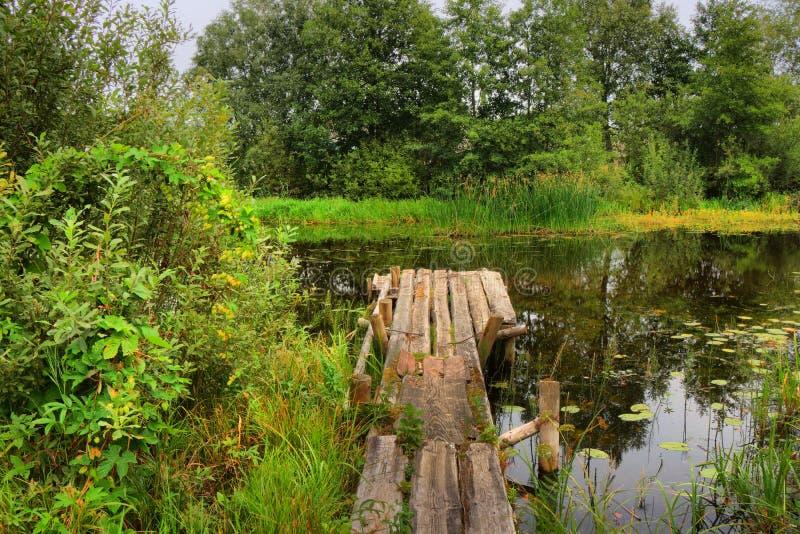 Holzbrücke in einem ruhigen, kleinen Fluss stockfoto