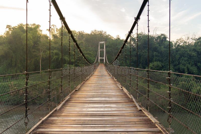 Holzbrücke entlang dem Fluss, zum des Waldes zu grünen stockbild
