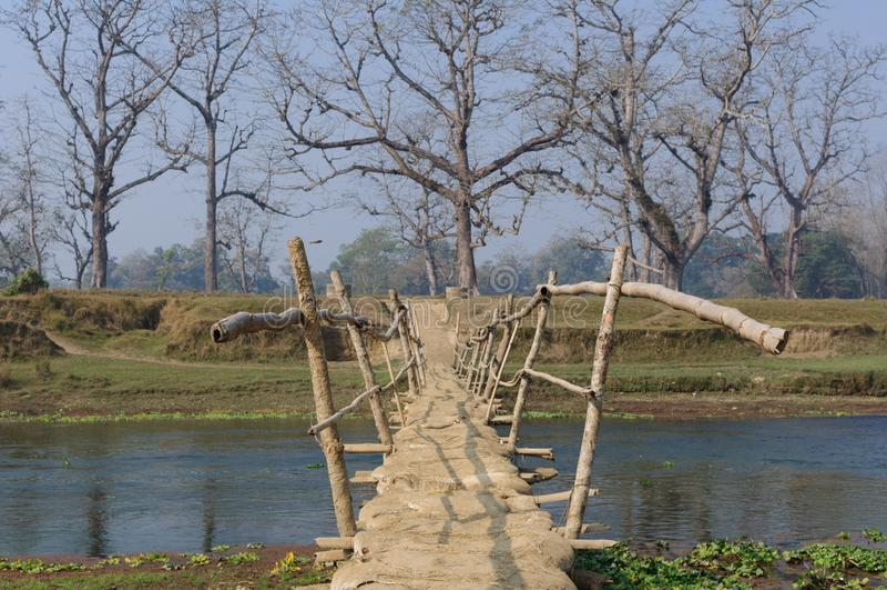Holzbrücke im Dorf in Brücke Nepals A über dem Fluss Rapti, im Nationalpark Chitwan nepal lizenzfreies stockbild