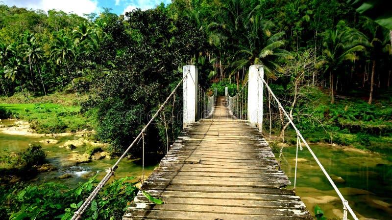 Holzbrücke im Dschungel auf Philippinen stockfoto