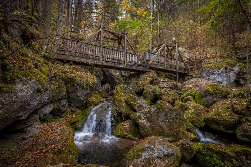 Holzbrücke in Kaskaden über moosige Felsen bei Myrafalle lizenzfreie stockbilder