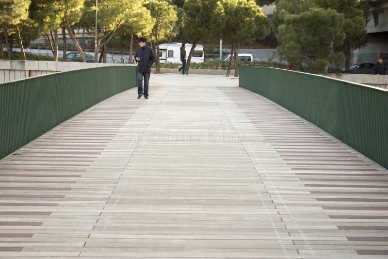 Holzbrücke in Madrid RÃo stockbild