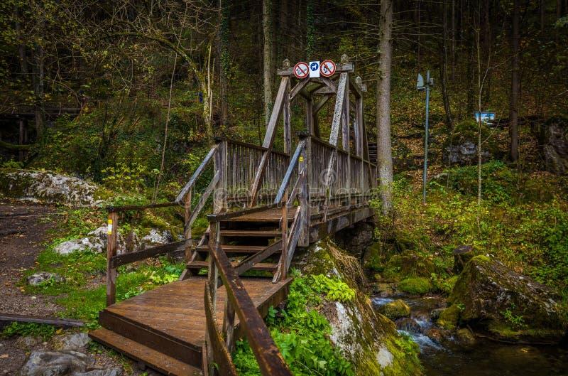Holzbrücke nahe Kaskaden über moosige Felsen bei Myrafalle lizenzfreie stockbilder