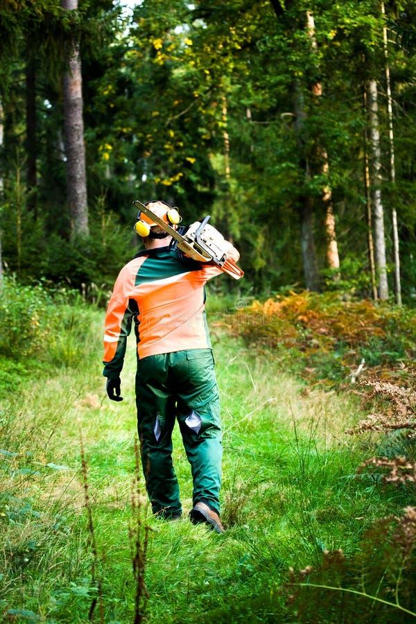 Holzfäller lizenzfreies stockfoto