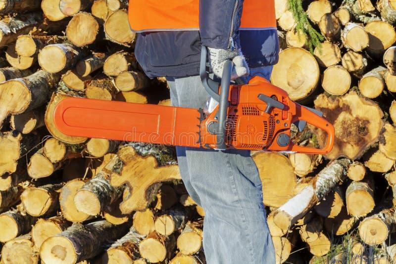 Holzfäller mit Kettensäge nahe Stapel von Klotz stockfotografie