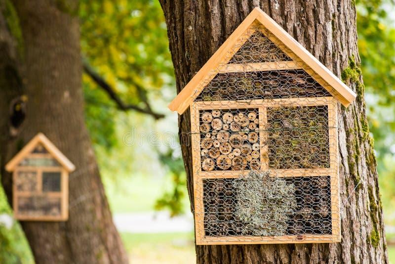 Holzhäuser für Winterschlaf haltene Insekten stockfotos