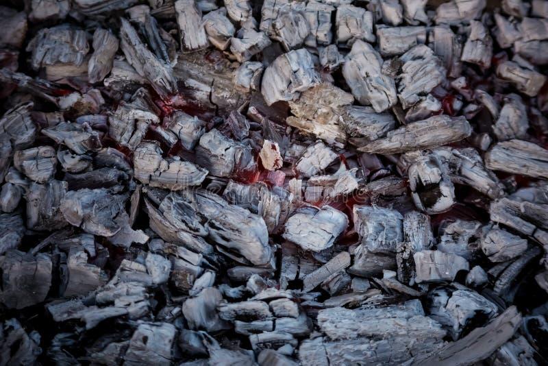 Holzkohle und Feuer stockbilder