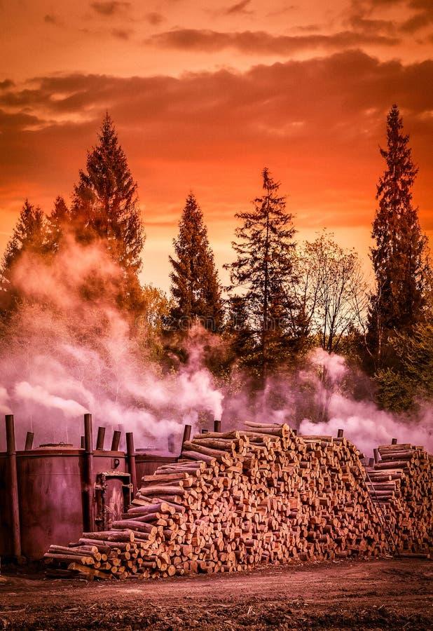 Holzkohlenproduktion lizenzfreies stockbild