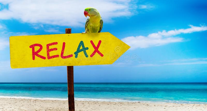Holzschild auf schönem Strand und klarem Seeesprittext sich entspannen Ein grüner Papagei sitzt auf einem Zeiger zu einem tropisc stockbilder