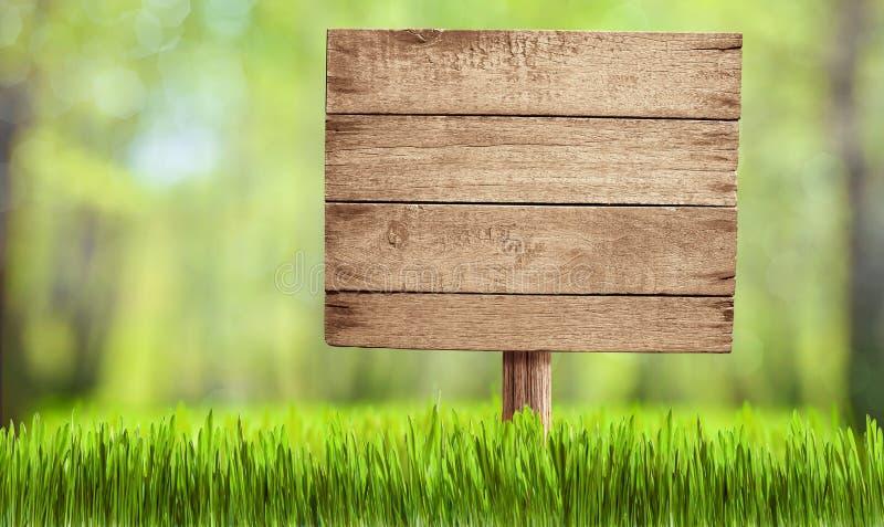 Holzschild im Sommerwald, -park oder -garten stockfoto