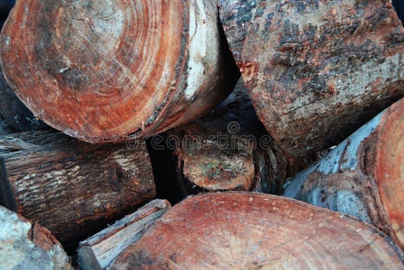 Holzschneideranteile an Stückchen stockbild