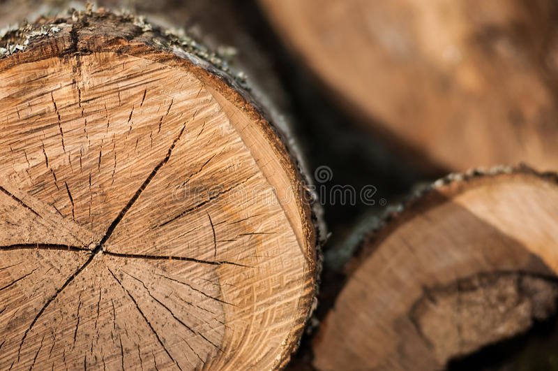 Holzschnitt lizenzfreie stockfotografie