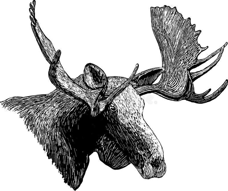 Holzschnitt-Elch-Kopf stock abbildung