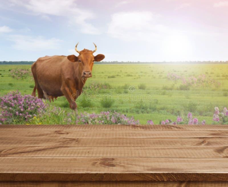 Holztisch über defocused Hintergrund mit Kuh- und Graswiese stockfotografie