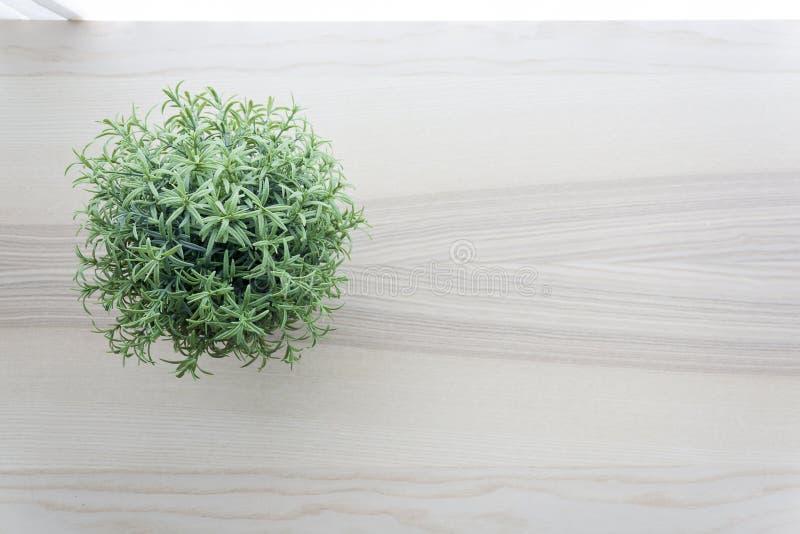 Holztischspitze mit kleiner Grünpflanze in den Töpfen auf Fenster lizenzfreie stockbilder